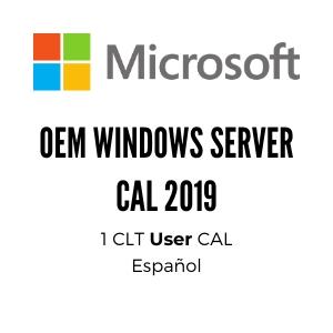 OEM WINDOWS SERVER CAL 2019 SPA 1PK DSP OEI 1 CLT USER CAL