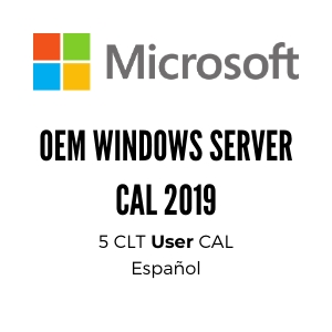 OEM WINDOWS SERVER CAL 2019 SPA 1PK DSP OEI 5 CLT USER CAL