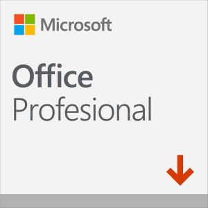 OFFICE PROFESIONAL 2019 ESD (descarga inmediata) Todos los idiomas.